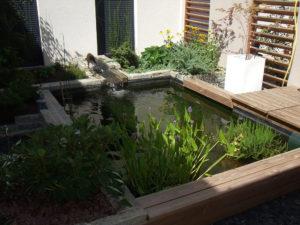 bassin dans patio, paysagiste rodez, aquavert