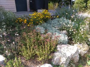paysagiste rodez, rocaille, aqua vert