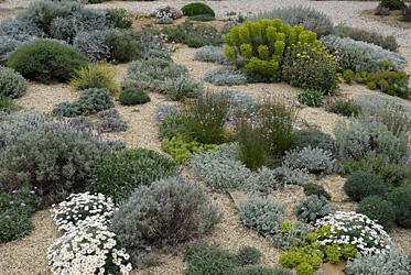 paysagiste rodez, jardin sec, aqua vert